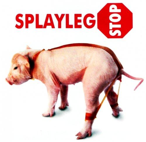 splaylegstop-20-paskow-korekcyjnych